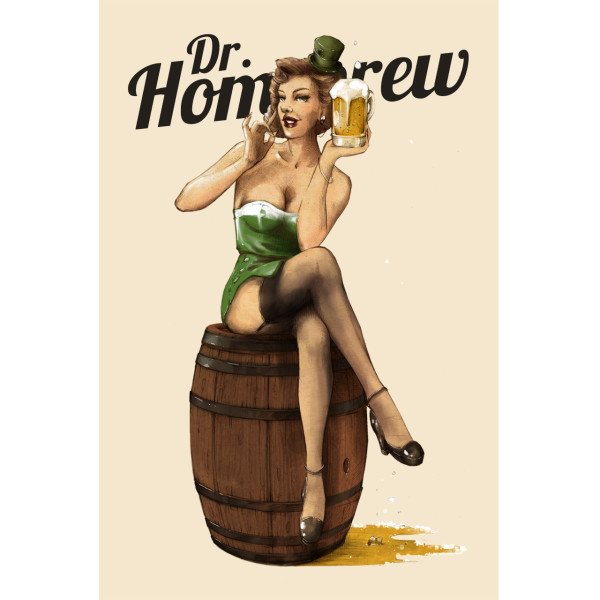 St Patricks Day Dr Homebrew Beer Girl Poster