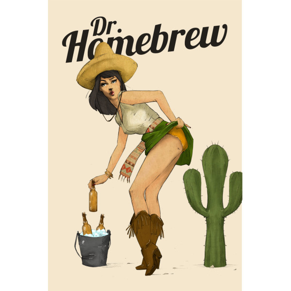 Sexy Cindo de Mayo beer girl poster by Dr. Homebrew
